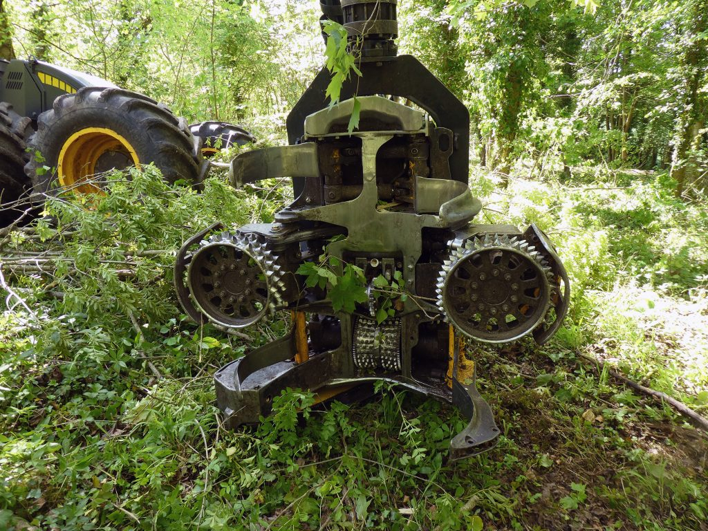 Fox Forestry Harvester, MJO Forestry, West Dean near Chichester