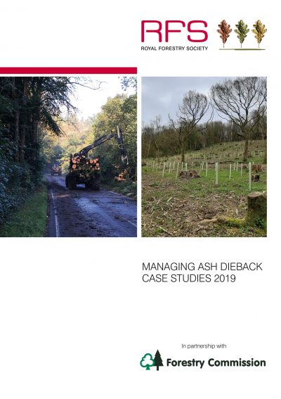 Ash Dieback case studies - including Harting Down woodland works and MJO Forestry